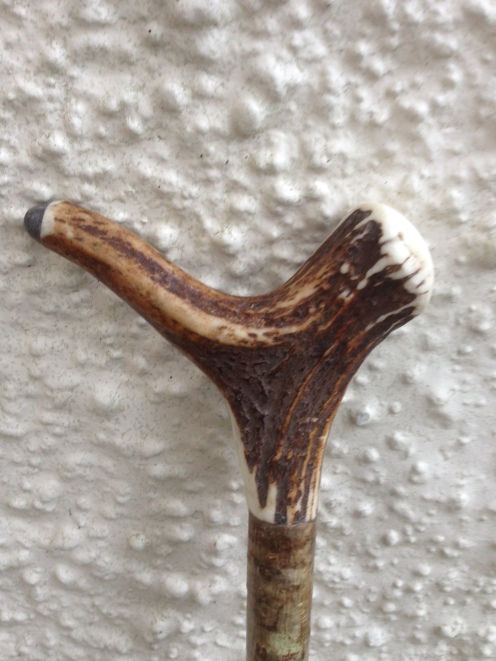 Red deer antler crutch top - this uses the coronet as the heel, it's tipped with a water buffalo cap